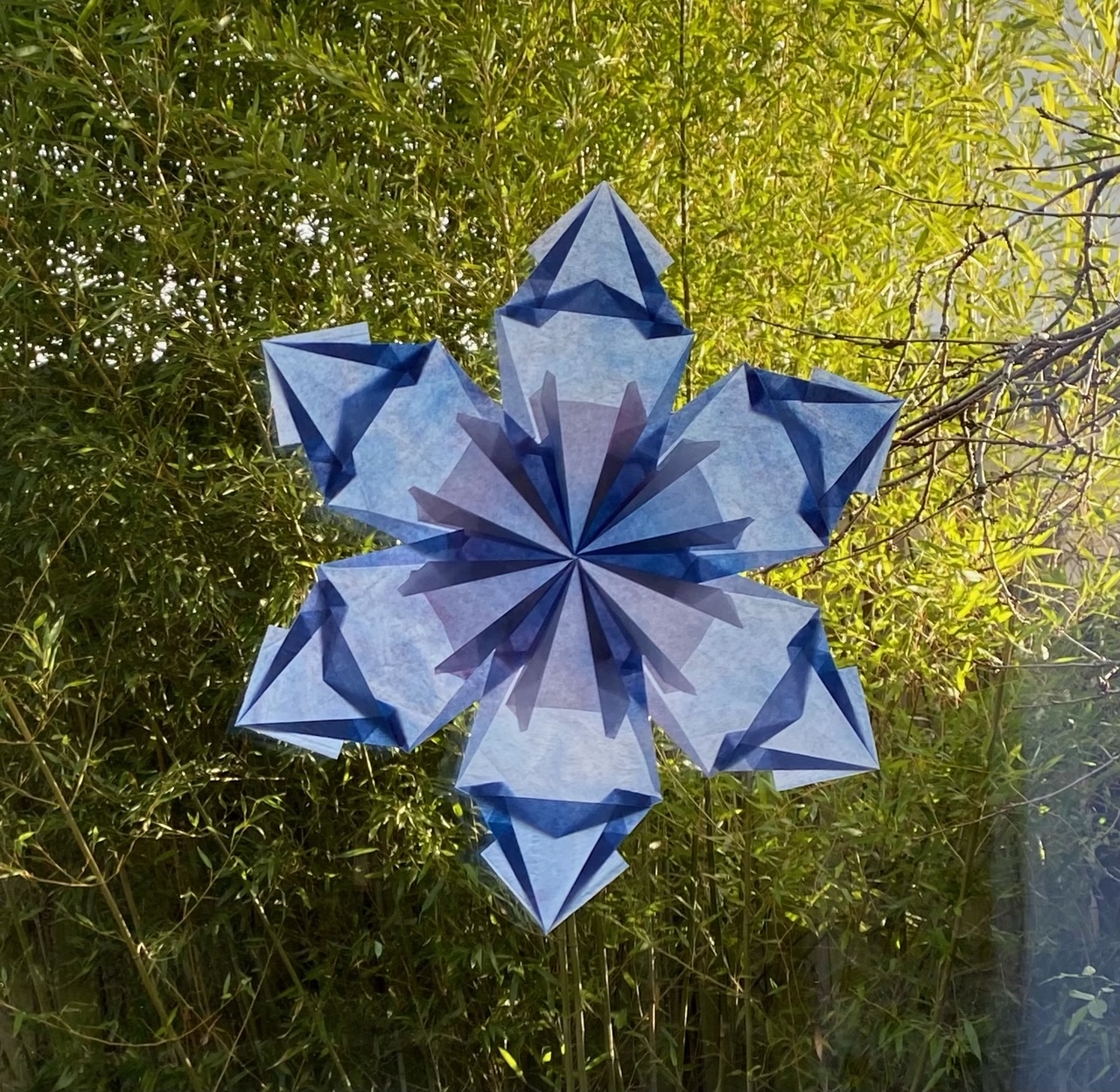 Digitaler Workshop: Winterblüte - ein Fensterbild für kalte Tage